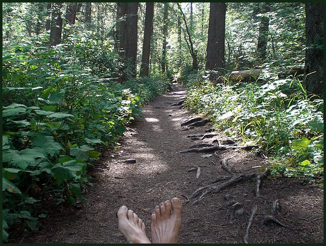 Trail to Pinecreek Falls