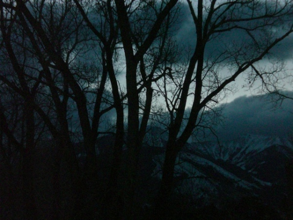 January Dawn 1