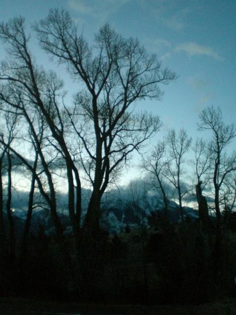 January Dawn 3