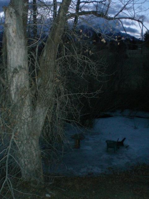 January Dawn 2