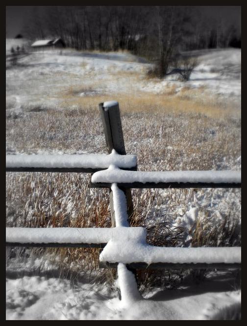 Fun Fence post.
