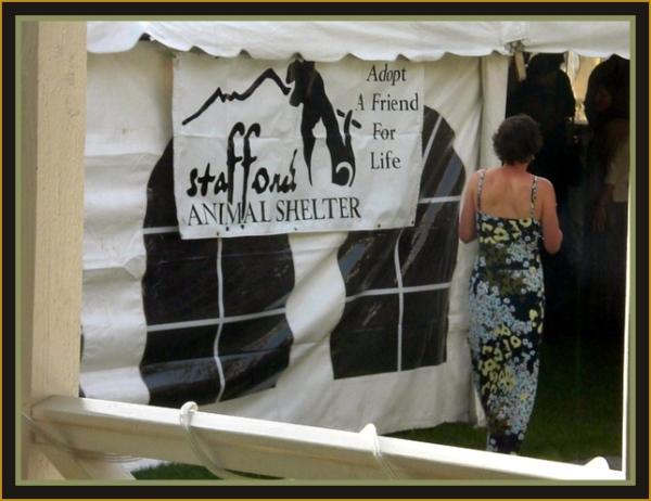 Tent Post 3