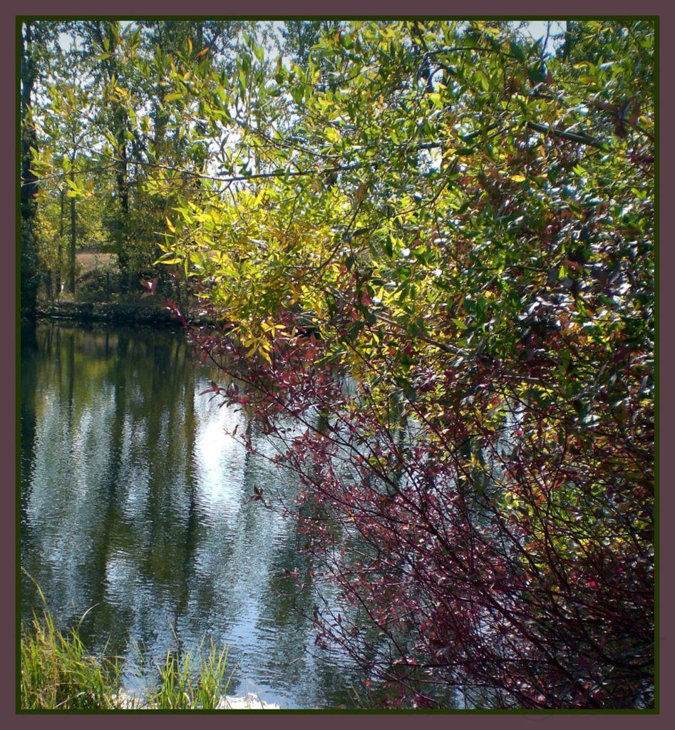 GAV Pond '12