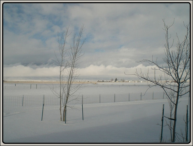 Ranchscape in Winter