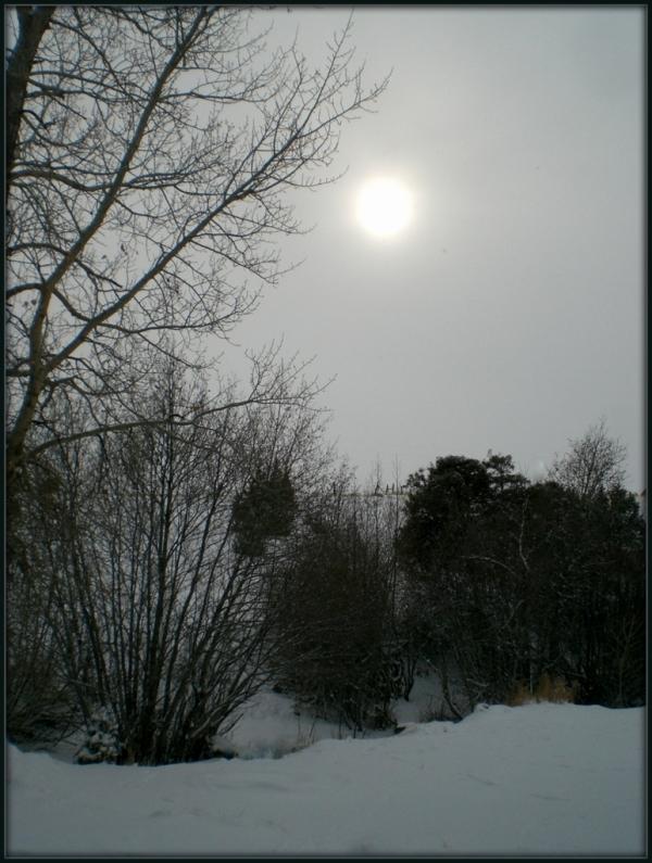 Frozen Fridley Creek