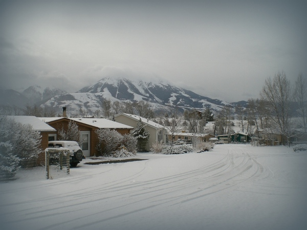 The last snowfall.