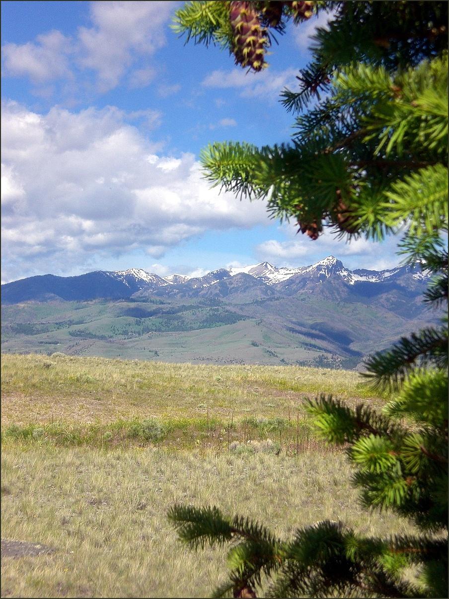 Absarokee  Mountains     Paradise Valley   Montana