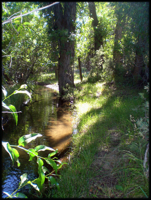 Firdley Creek in North Glastonbury, Montana