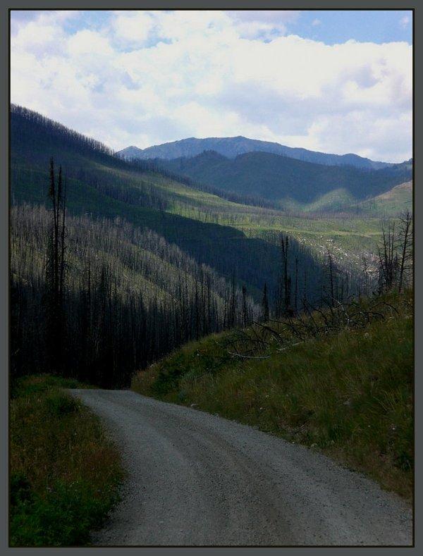 Mill Creek Burn