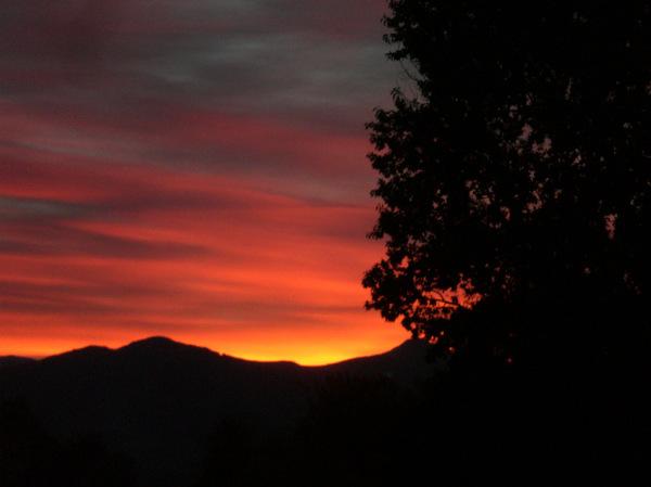 Dawn  1