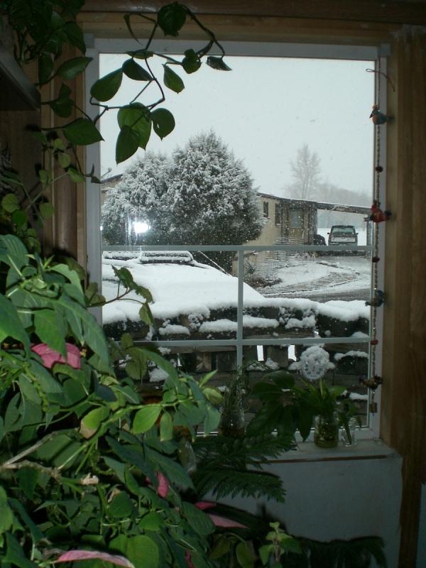 ...snow....again.