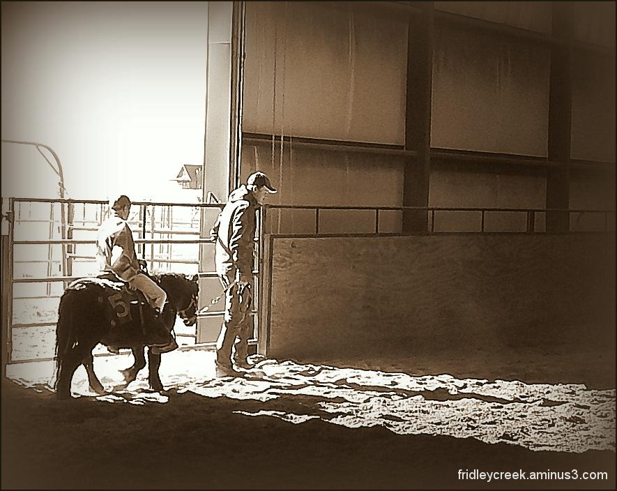Paradise Valley Equine    Montana
