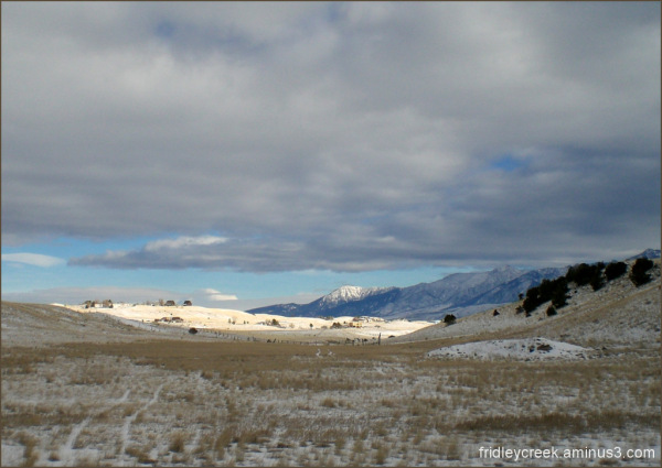 Montana Winterscapes