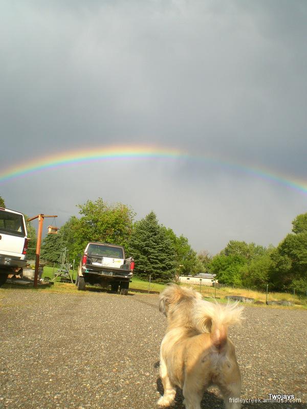 Emily and rainbow