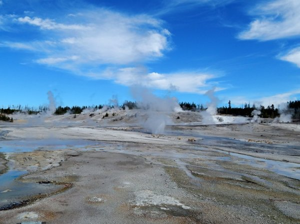 Norris Basin Thermal Pools