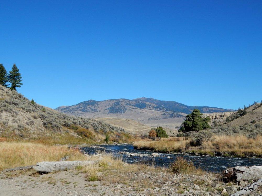 Buffalow Chip Meadow and Creek