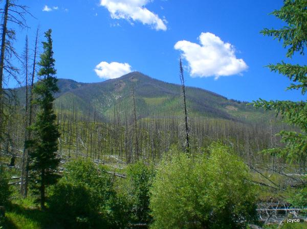Mill Creek Burn #3