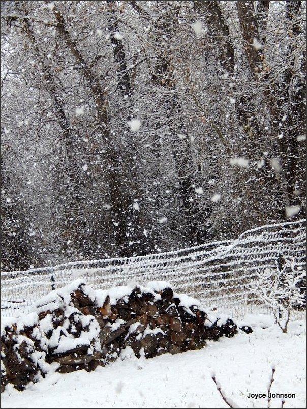 fat snow 11.17