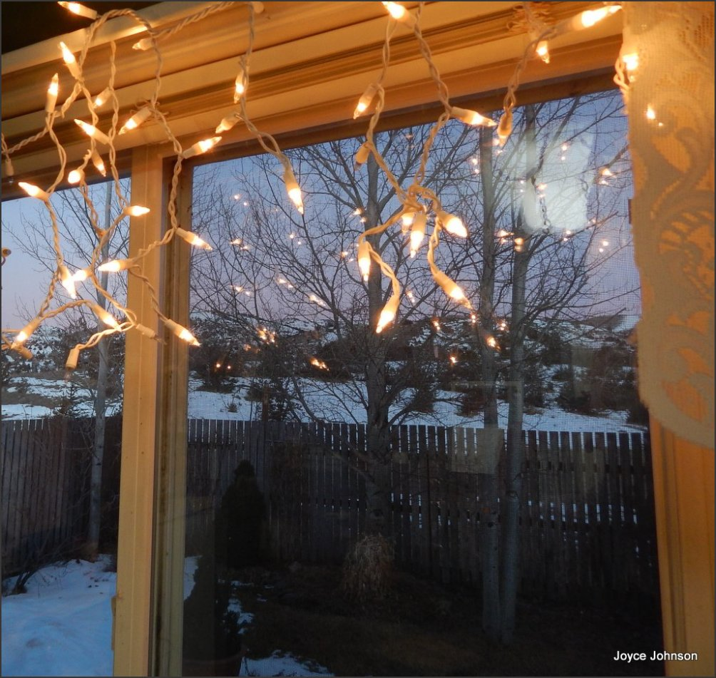 fairy lights for all of winter