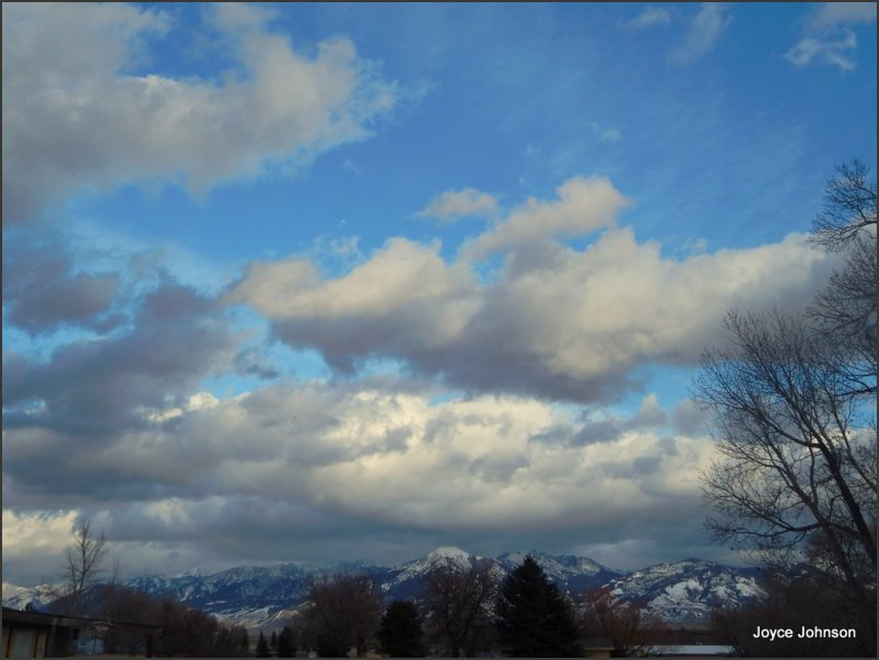 Springish Winter sky