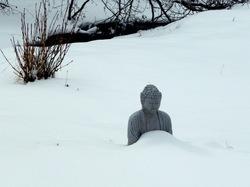 Buddha of the Pure White Snow