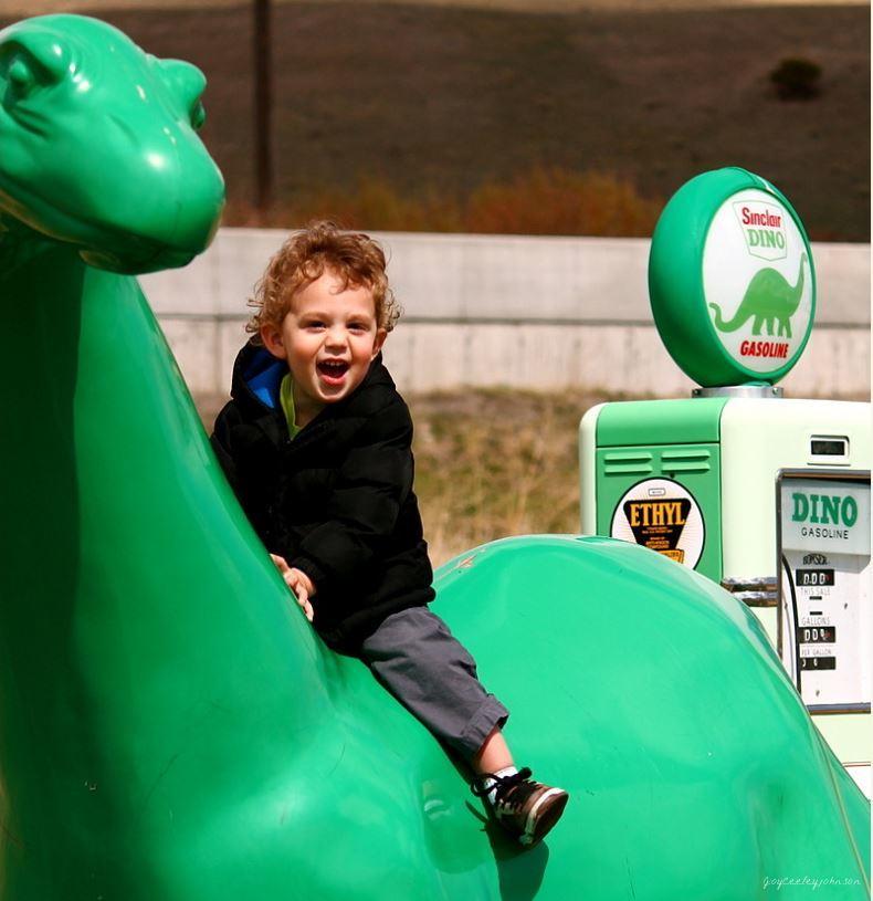 Dinoboysaurus