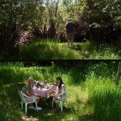 Creekside Summer Office