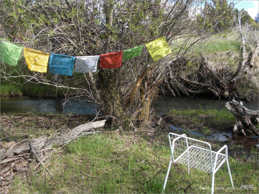 Prayer Flags for Earth