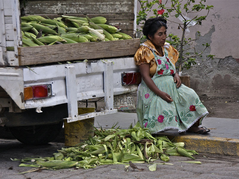 Buy my corn…