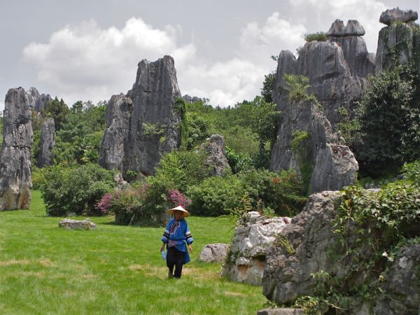Shilin stones's forrest