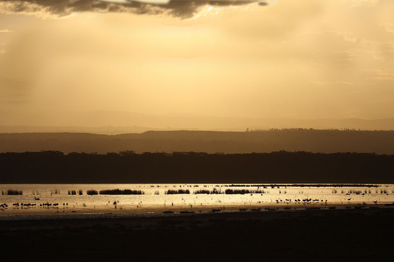 Sunset in Lake Nakuru