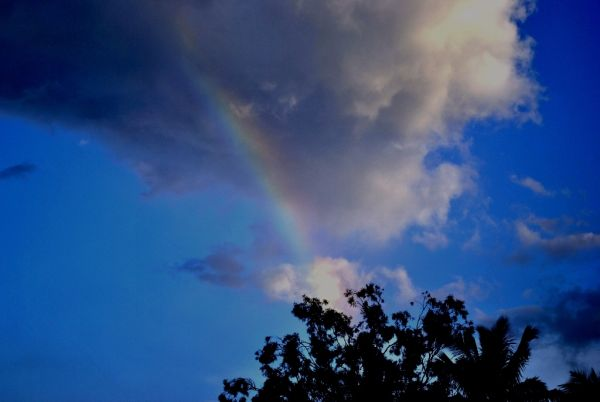 RainBow. Colors Of Nature.