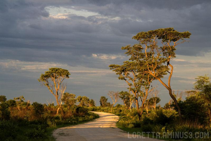Landscape, road, Botswana,