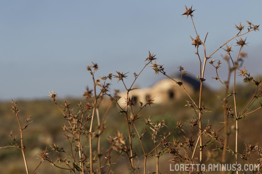 Abandoned Karoo homestead