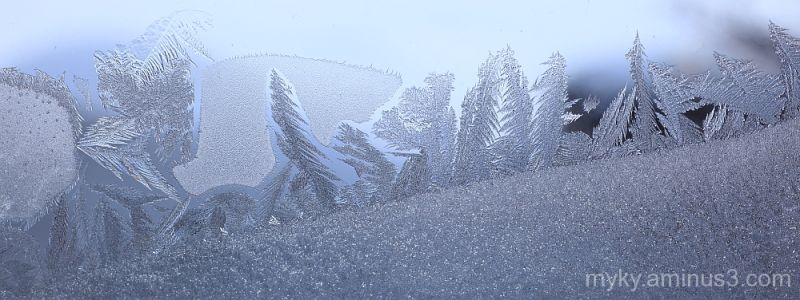 frost glass macro