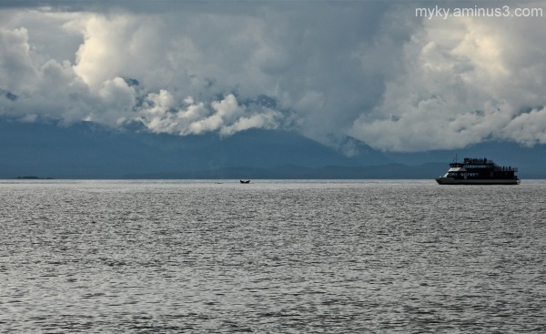 Alaska...Whale Watching -1