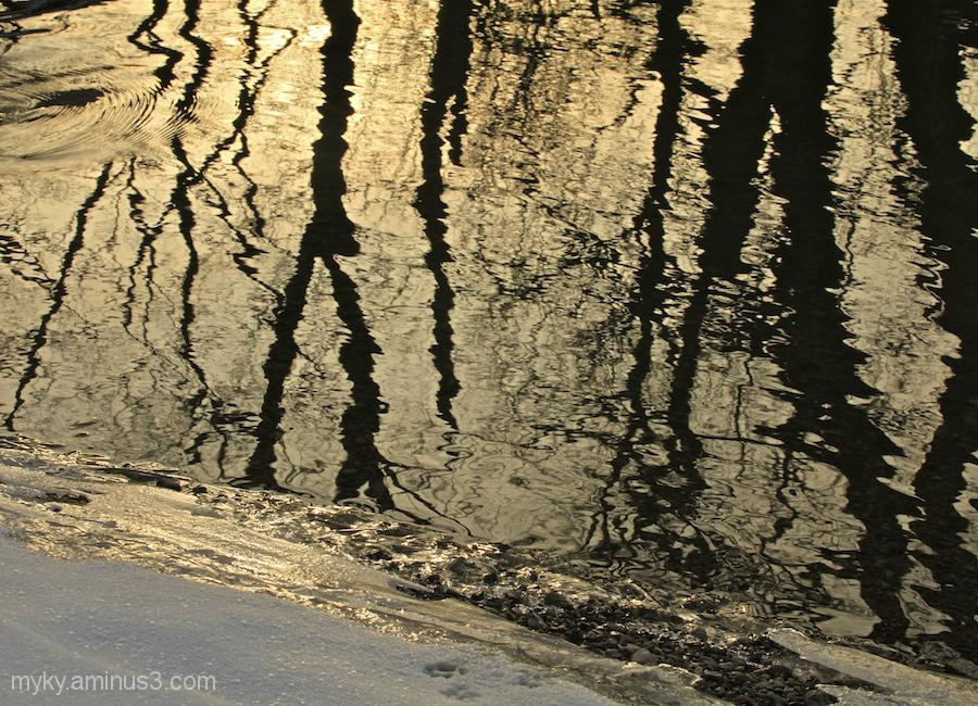 Water's Edge...
