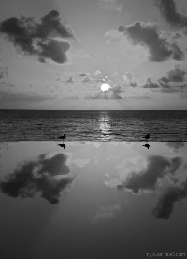 Is Reality an Illusion...