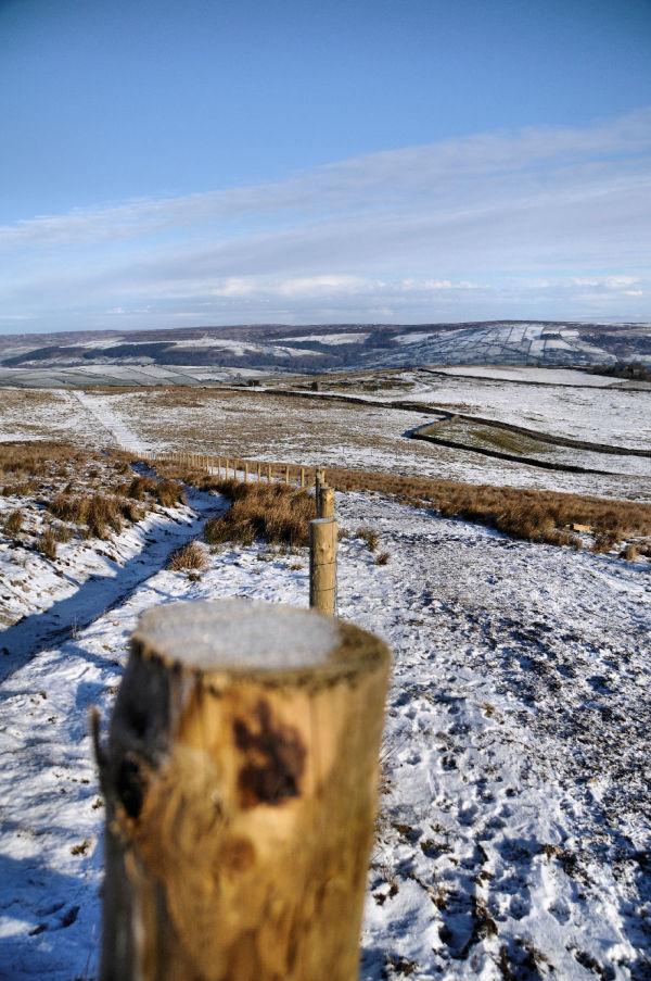 a winter wonder land