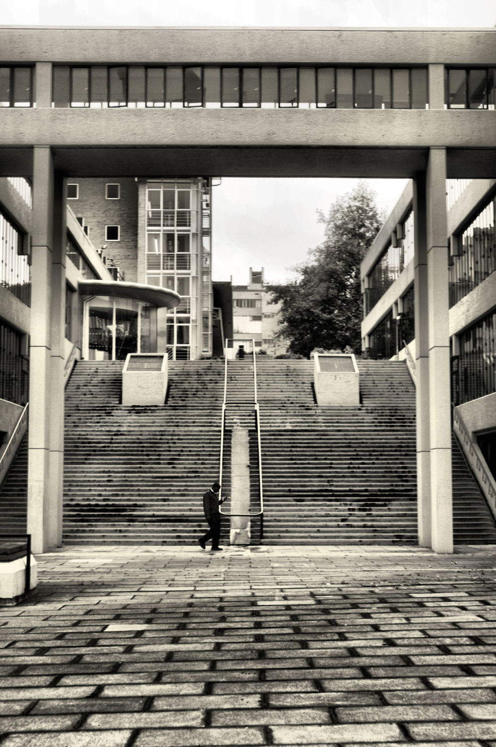 steps to oblivion....