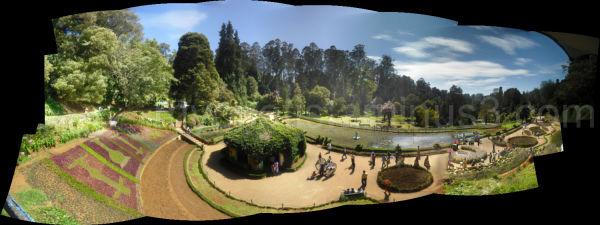 ooty-botanical garden