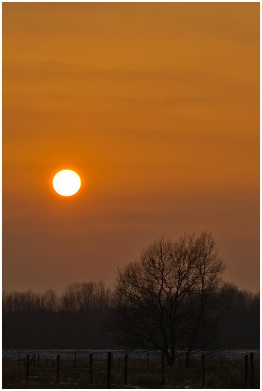 Evening shot
