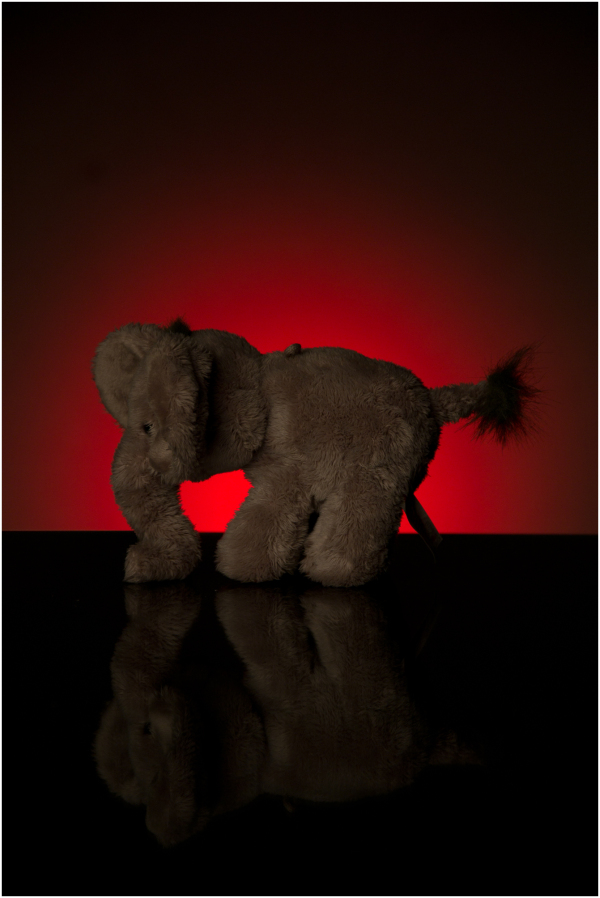 My daughter's elephant