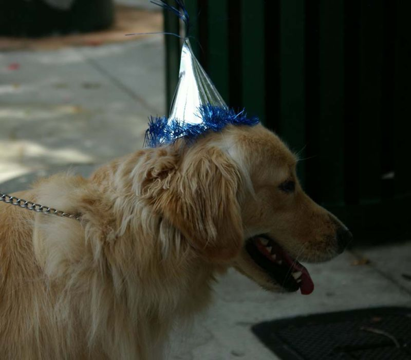 Happy 2nd Birthday to Me!