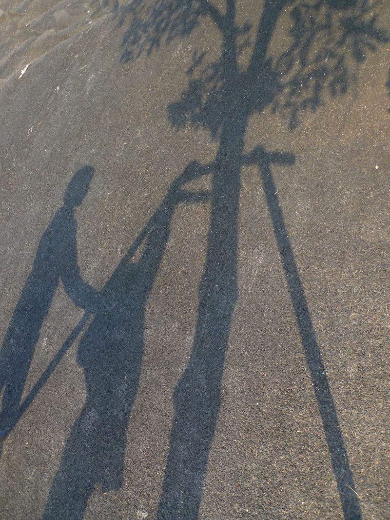 Jeux d'ombres