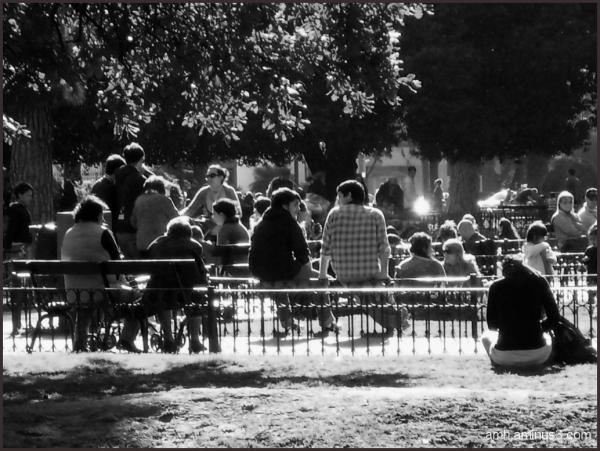 Reunión en la plaza  Arenales