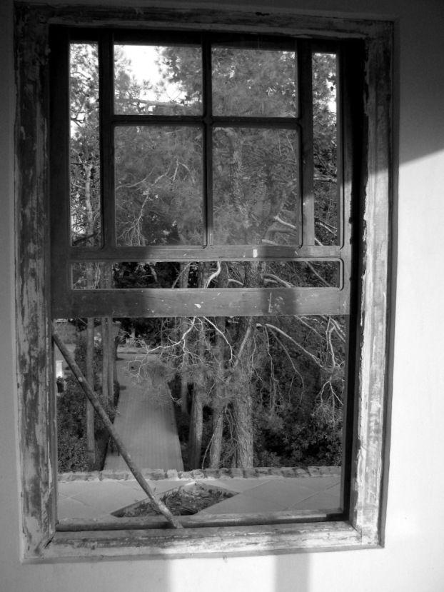 ارسی پنجره های رو به نور