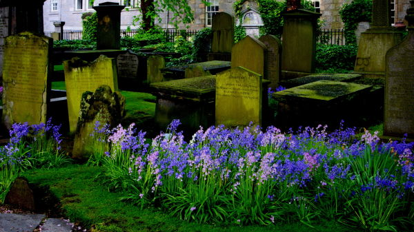 graves in the kirkyard of st. nicholas aberdeen