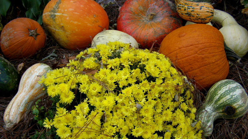 symbols of autumn