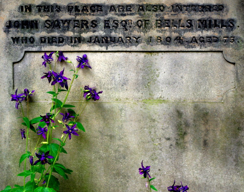 columbines adorning a gravestone, edinburgh